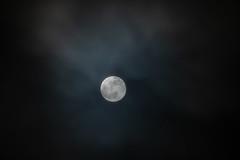 Full Moon on Cloudy Night (Tony Webster) Tags: minnesota superbloodwolfmoon tonywebster eclipse lunareclipse moon superblood supermoon wolfmoon eastlake unitedstatesofamerica us