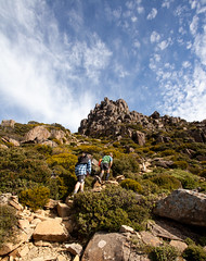 Mount Ossa Track