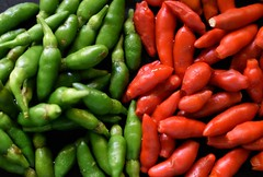 Chillies (Praveen Banneka) Tags: spice hot chillr srilanka red green asia spicey food vegetable 5faves 10faves 15faves 20faves
