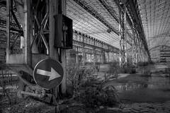 Abandoned_1 (MarinoLandolfo) Tags: ferro rugine fabbriche abbandonato segnali stradali rete