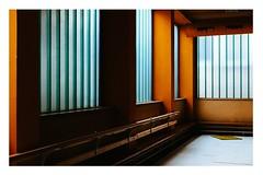 The Orange Cave (Thomas Listl) Tags: thomaslistl color indoor interior hall dojo moz aikido orange windows lines geometry graphical contrast saturation