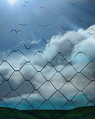 Break Free Of Your Chains (Len Erickson) Tags: freedom breakfree chains sky life