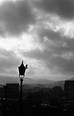 Magpie (ECKE86) Tags: morning fog clouds skyline magpie bird diffuse black white blackandwhite blackwhite monochrome lantern lamp hill mountain f happiness luck fortune impressed amazed sun bergen norway 2019 february schwarzundweiss grey schwarz weiss noireetblanc