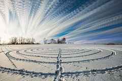 Spiral Path (Matt Molloy) Tags: mattmolloy timelapse photography timestack photostack movement motion clouds trails spiral landart snowdrawing footprints path sky trees rows lines corn field snow winter countryside landscape skyscape nature seeleysbay ontario canada trippy strange art