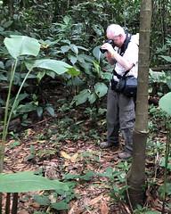 Costa Rica - Robert checking his owl photos (Rez Mole) Tags: costa rica