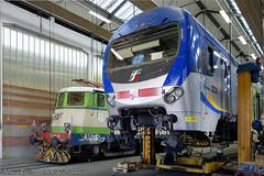 E610-01_TAF222_Novate_27mar19 (treni_e_dintorni) Tags: e61001 ferrovienordmilano taf taf222 novate officina trenidintorni treniedintorni treni train züge thomasradice