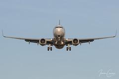 Boeing 737-85P – Air Europa – EC-LTM – Brussels Airport (BRU EBBR) – 2019 02 26 – Landing RWY 25L – 02 – Copyright © 2019 Ivan Coninx (Ivan Coninx Photography) Tags: ivanconinx ivanconinxphotography photography aviationphotography boeing boeing737 boeing737800 boeing73785p 737 b737 737800 73785p aireuropa ecltm brusselsairport bru ebbr aviation landing