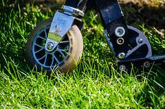 Scooter Boy! (BGDL) Tags: lightroomcc nikond7000 nikkor55200mmf4556g bgdl garden grass lawn scooter roundandround week15 weeklytheme flickrlounge