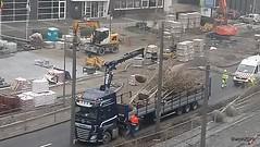 Hello, to the new trees (wwilliamm) Tags: noorderlijn italielei 2019 antwerp antwerpen amberes anvers
