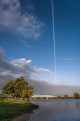Get in line! (Ingeborg Ruyken) Tags: shertogenbosch autumn october instagram maas oktober 500pxs maaspoort natuurfotografie ochtend fall flickr herfst