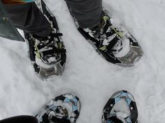 40/365: Snowshoeing