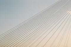 bridge (hisaya katagami) Tags: bridge zeissikon carlzeiss planart250 35mmphotography 135film filmphotography sky