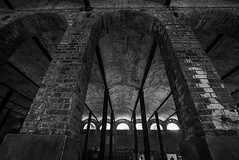 DSC01621 (Damir Govorcin Photography) Tags: paddington reservoir gardens sydney blackwhite monochrome architecture wide angle composition sony a7rii zeiss 1635mm