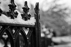 Frozen Gate (Paul D. McCarthy) Tags: minolta58mmmcrokkorpff14lens snow a6000 sony winter bw vintagelens crazytuesday
