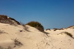Westland (ulbespaans) Tags: westland dunes duinen bluesky landschap landscape landschapsfotografie landscapephotography minimalisme minimalism lessismore lessismoreoutdoors