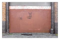 The Built Environment, East London, England. (Joseph O'Malley64) Tags: thebuiltenvironment newtopography newtopographics manmadeenvironment manmadestructure building structure workshop garage 20thcenturybuilding shutter rollershutter entrance exit boardedup plywoodpanels plywood woodenpanels brickwork bricksmortar glazedbricks cement pointing bollard ramp cobbles cobblestones setts granitekerbing concrete paint graffiti carpanel plasticpanel rabbit tag eastlondon eastend london england uk britain british greatbritain urban urbanlandscape urbanarchitecture architecturalphotography documentaryphotography britishdocumentaryphotography fujix fujix100t accuracyprecision