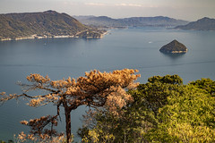 View from Mount Misen on the Japanese Inland Sea (1) (fnks) Tags: asia japan tokyo hiroshima miyajima island sea trees ropeway shrines buddhism temples ferry sky deer beach tides tanterns water sunshine mountains