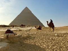 Giza plateau, Cario, Egypt (cattan2011) Tags: desert landscapephotography landscape naturelovers natureperfection naturephotography nature sunset camel pyramids cariopyramids traveltuesday travelphotography travelbloggers travel egypt gizaplateau