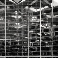 distortion (fhenkemeyer) Tags: hww architecture denhaag square distortion windows