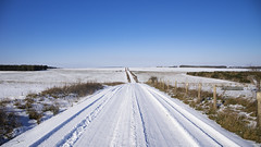 the start of our snow day adventure (Redheadwondering) Tags: sonyα7ii salisburyplain wiltshire winter snow landscape tracks byway sigma sigma2470lens 119picturesin2019 61journey 61 journey fence fenceposts