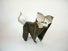 Tim Dog - Nicolas Terry (Rui.Roda) Tags: origami papiroflexia papierfalten chien cão cachorro perro tim dog nicolas terry