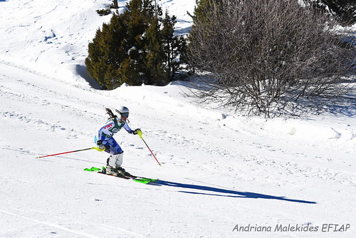 Alpine Races I & II Feb 2019_08