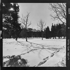 Footprints in the snow (Micah Bowerbank Photography) Tags: hamilton ontario canada ca