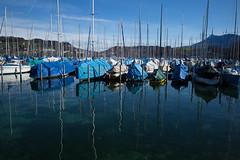 ready (Toni_V) Tags: m2400205 rangefinder digitalrangefinder messsucher leicam leica mp typ240 type240 28mm elmaritm12828asph hiking wanderung randonnée escursione waldstätterweg vierwaldstättersee luzernersee reflections boats segelboot luzern switzerland schweiz suisse svizzera svizra europe tribschen ©toniv 2019 190316 lucerne