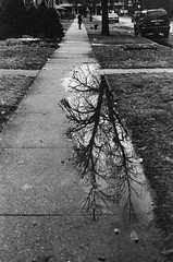 Street Mirror (spablab) Tags: minoltax7003200noritsukokiezcontrollerkodaktmaxprofessionalmemphisfilmlablenstagger minolta x700 kodak professional tmax 3200 p3200 bw black white ishootfilm analog film minoltax7003200noritsukokiezcontrollerkodaktmax 45mm rokkor chicago puddle reflection water