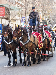 Tres Tombs de Barcelona 2019 (56) (Ismael March) Tags: barcelona trestombs trestombsdebarcelona santantoni sanantón