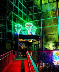 Red Green Ballloon (JoelDeluxe) Tags: rol riveroflights abq biopark nm december 2018 albuquerque biological park pnm light display colors lights sculptures fantasy newmexico hdr joeldeluxe
