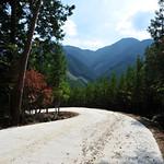 林道(作業道)・土場・休憩施設の写真