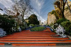 Escaliers Denis Papin (v.hajek) Tags: denispapin escaliers city blois ville