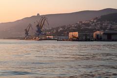 Harbour (No_Mosquito) Tags: trieste italy canon powershot g7xmarkii molo audace crane port