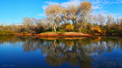 In The Middle Of Nowhere (VGPhotoz) Tags: vgphotoz water reflections nature photography olympus em1markii m1442mm f3556 river natural usa arizona nowhere inthemiddle januaryinphoenix january 2019 sky clouds fugitivemoment marculescueugendreamoflightportal