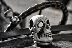 Deadhead.... (Joe Hengel) Tags: deadhead lowerslowerdelaware lsd lewesde lewes delaware de sussexcounty car steeringwheel skull hood bw blackandwhite monochrome texture