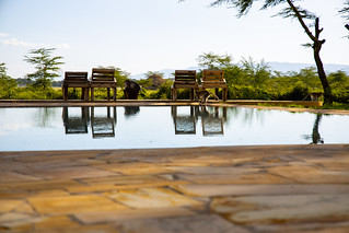 Africa Safari Lake Manyara pool