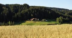 DSC05662 (ursrüegsegger) Tags: linden juli august getreideernte bauernhöfe landschaft regenbogen