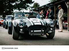 1963 AC Cobra (Entrant/Driver Malcolm Young and Nicolas Minassian and Anthony Reid) at the 2018 Goodwood Revival (Dave Adams Automotive Images) Tags: 2018 70200 automotive automotivephotography car carvintage cars chichester classiccar classicdriver daai daveadams daveadamsautomotiveimages driveclassics drivetastefully dukeofrichmond fordwater gt goodood goodwoodrevival goodwoodrevival2017 iamnikon kinrara lavant lordmarch motorsport motorsportphotography nikon paddock petrolicious pistonheads ractt racing revival sigma sigmaart stmarys sussex vintage vintagecar whitsun wwwdaaicouk 1963 ac cobra goodwood classicsportscar goodwoodstyle grrc sportscarsociety sportscarsofinstagtam becauseracecar blacklist carswithoutlimits luxurycars amazingcars247 auto sportscar automotivedaily carsofinstagram classiccars photooftheday classicsdaily classiccaroftheday