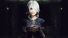 72850_20190213211610_1 (SasakiPajero) Tags: enb elder 3d tes tesv snapdragonprimeenb screenshot face eyes videogame v shorthair vampire