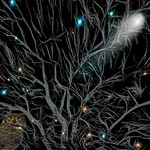 Tree Scene in the Dark thumbnail