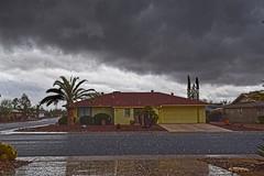 Hale Storm in Sun City West Arizona (oybay©) Tags: weather winter winterweather azwx arizona clouds sky rain hale palmtrees reflection cold ominous
