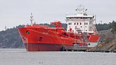 The oil tanker Sten Odin at Berg Oil Port in Nacka near Stockholm (Franz Airiman) Tags: båt boat ship fartyg stockholm sweden scandinavia coot sothöna