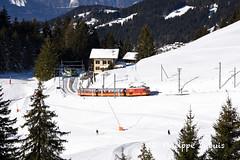 BVB: HGe 4/4 31 au Col-de-Soud (passiontrain.ch) Tags: hge 44 31 bdeh 81 col de soud croisement bvb tpc bex villars bretaye suisse vaud métrique