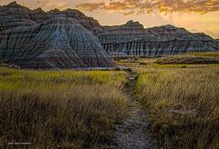 Sunrise Path at the Badlands (jackalope22) Tags: badlands sd 917 grasses path sunrise clouds rock