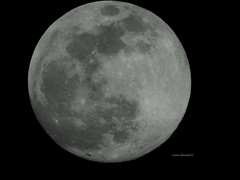 Super Snow Moon 2019 (Anton Shomali - Thank you for over 2 million views) Tags: nature 2019 219 stormmoon moon supermoon hungermoon snow moonsuper moonstorm bright large night round super hunger storm february big sky nikon coolpix p900