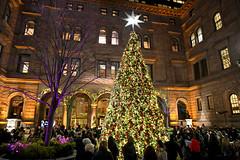 How Many Americans Celebrate Christmas? It's Time To Get Into The Holiday Spirit (alsfakia) Tags: wisdom by alexandros g sfakianakis anapafseos 5 agios nikolaos 72100 crete greece 00302841026182 00306932607174 alsfakiagmailcom newyork ny unitedstates usa