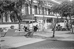 (Janeprogram) Tags: пленка 35mm blackandwhite bnwphotography filmphotography ilfordhp5