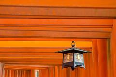 A lantern (ashokboghani) Tags: inari japan toriis religion red