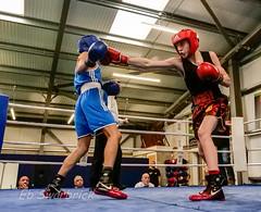 ABA-1910795.jpg (bridgebuilder) Tags: west aba barton boxing club eccles sport north amateur bps sig counties